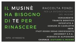 Il direttivo del Caselette si autotassa per la riforestazione del Musinè
